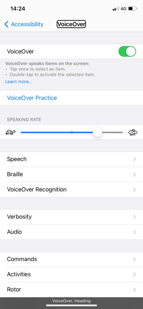 Скриншот од опциите на VoiceOver